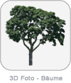 3D Foto - Bäume